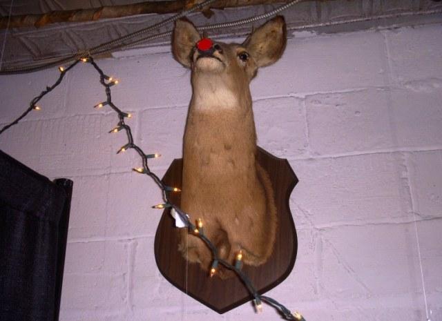 19-Rudolph